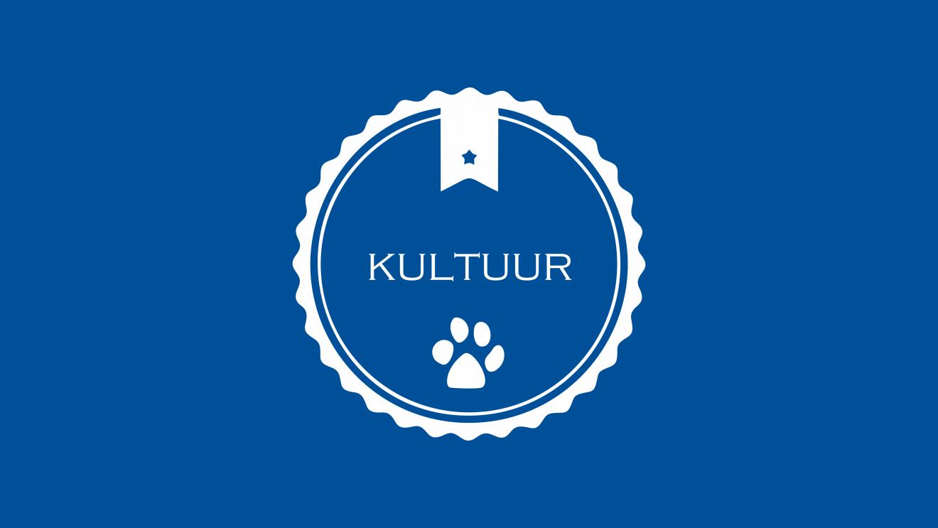 KULTUUR_TILE EN IMAGE