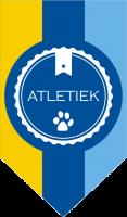 H_ATLETIEK_BRIEFHOOF